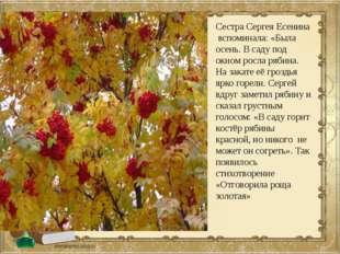 Сестра Сергея Есенина вспоминала: «Была осень. В саду под окном росла рябина.