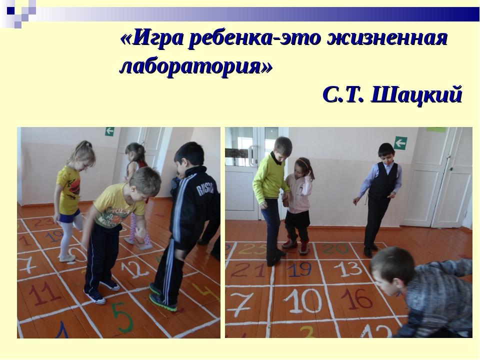 «Игра ребенка-это жизненная лаборатория» С.Т. Шацкий