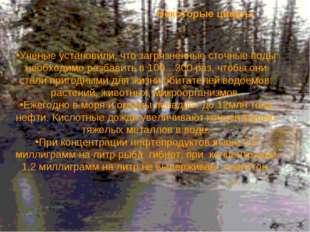 Ученые установили, что загрязненные сточные воды необходимо разбавить в 100…3