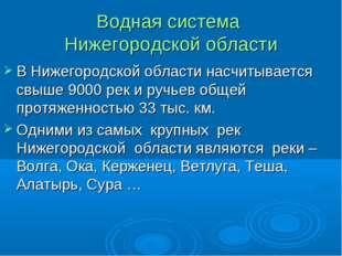 Водная система Нижегородской области В Нижегородской области насчитывается св