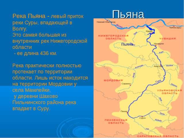 Река Пьяна - левый приток реки Суры, впадающей в Волгу. Это самая большая из...