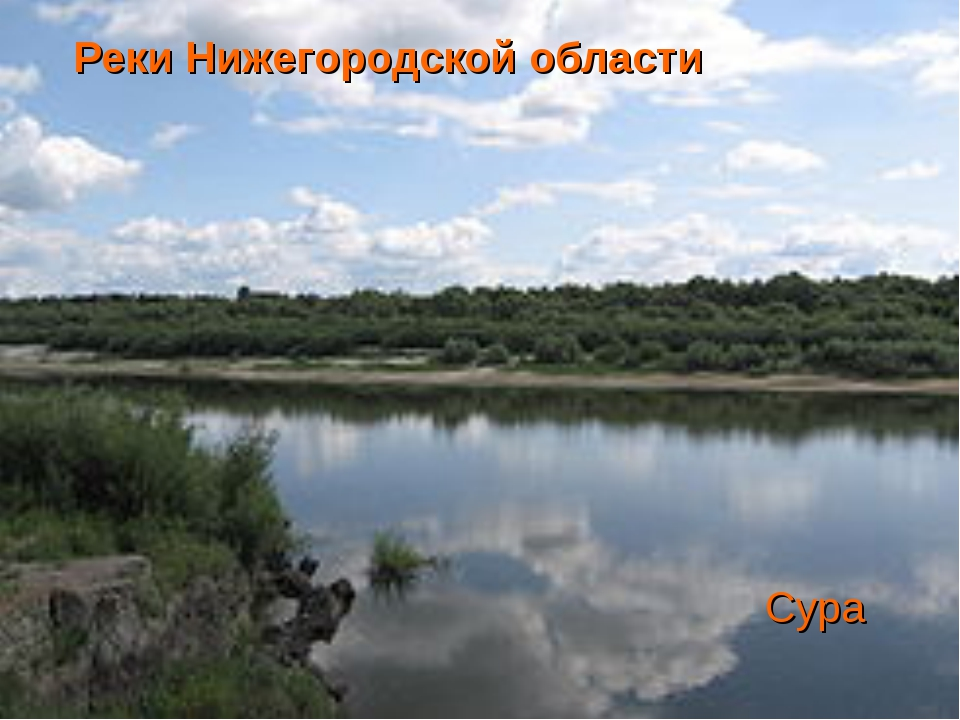 Реки Нижегородской области Сура