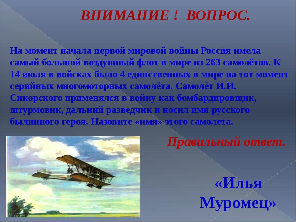 На момент начала первой мировой войны Россия имела самый большой воздушный фл...