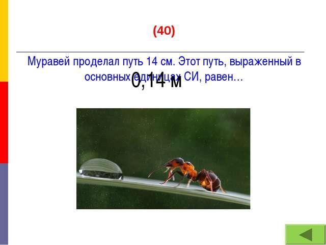 (40) Муравей проделал путь 14 см. Этот путь, выраженный в основных единицах С...