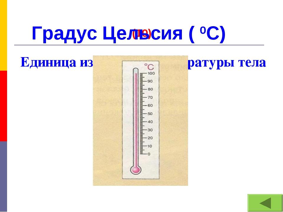 (10) Единица измерения температуры тела Градус Цельсия ( 0С)