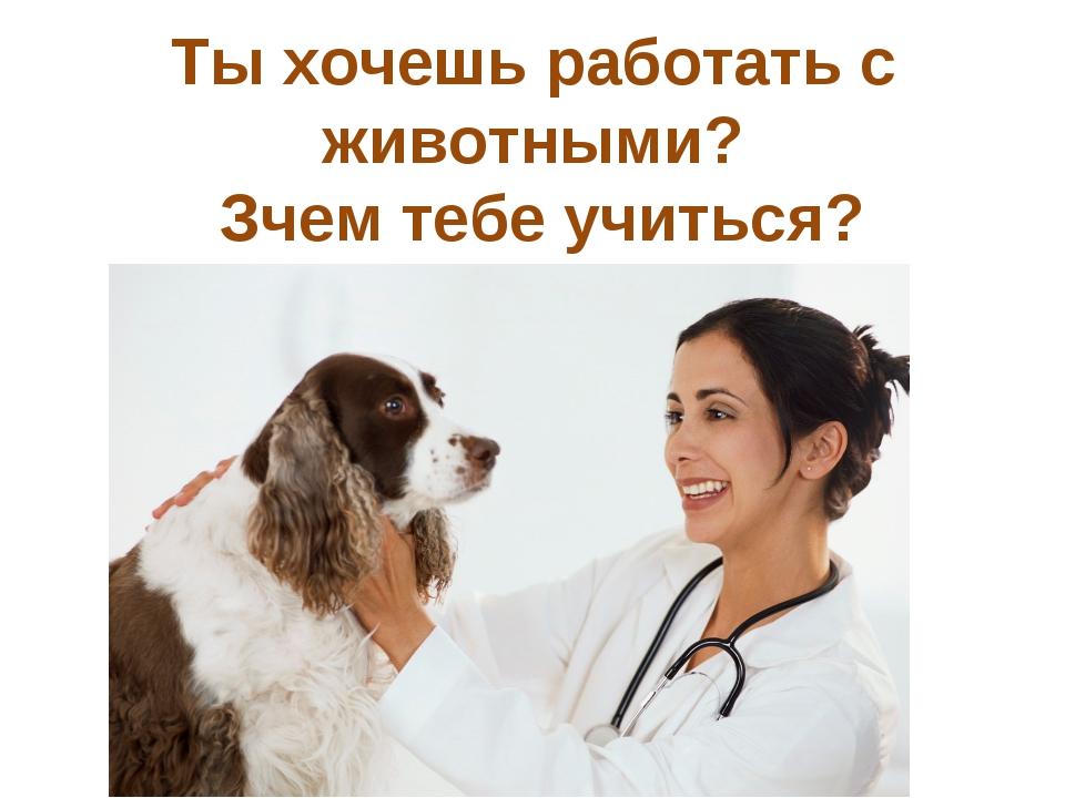 Ты хочешь работать с животными? Зчем тебе учиться?