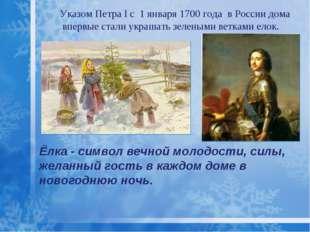 Ёлка - символ вечной молодости, силы, желанный гость в каждом доме в новогодн