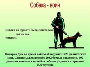 Собака на фронте была санитаром, связистом, сапёром. Овчарка Дик во время вой