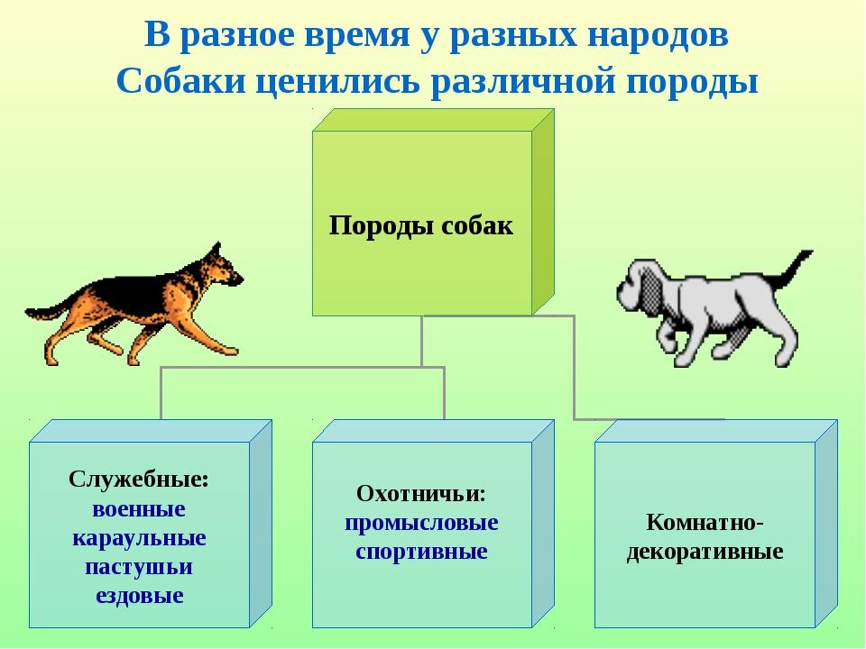 В разное время у разных народов Собаки ценились различной породы