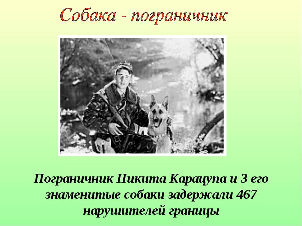 Пограничник Никита Карацупа и 3 его знаменитые собаки задержали 467 нарушител...