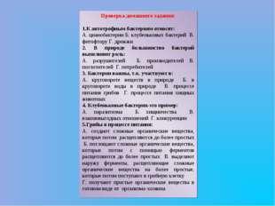 Проверка домашнего задания: 1.К автотрофным бактериям относят: А. цианобактер