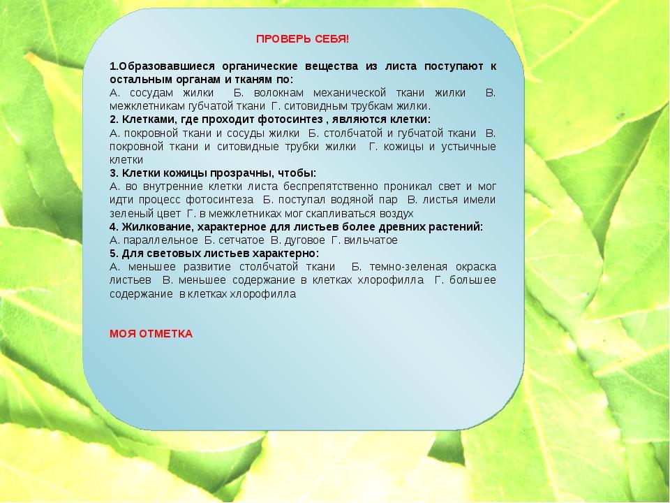 ПРОВЕРЬ СЕБЯ! 1.Образовавшиеся органические вещества из листа поступают к ост...