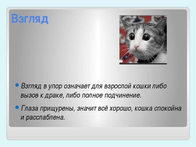 Взгляд Взгляд в упор означает для взрослой кошки либо вызов к драке, либо пол...