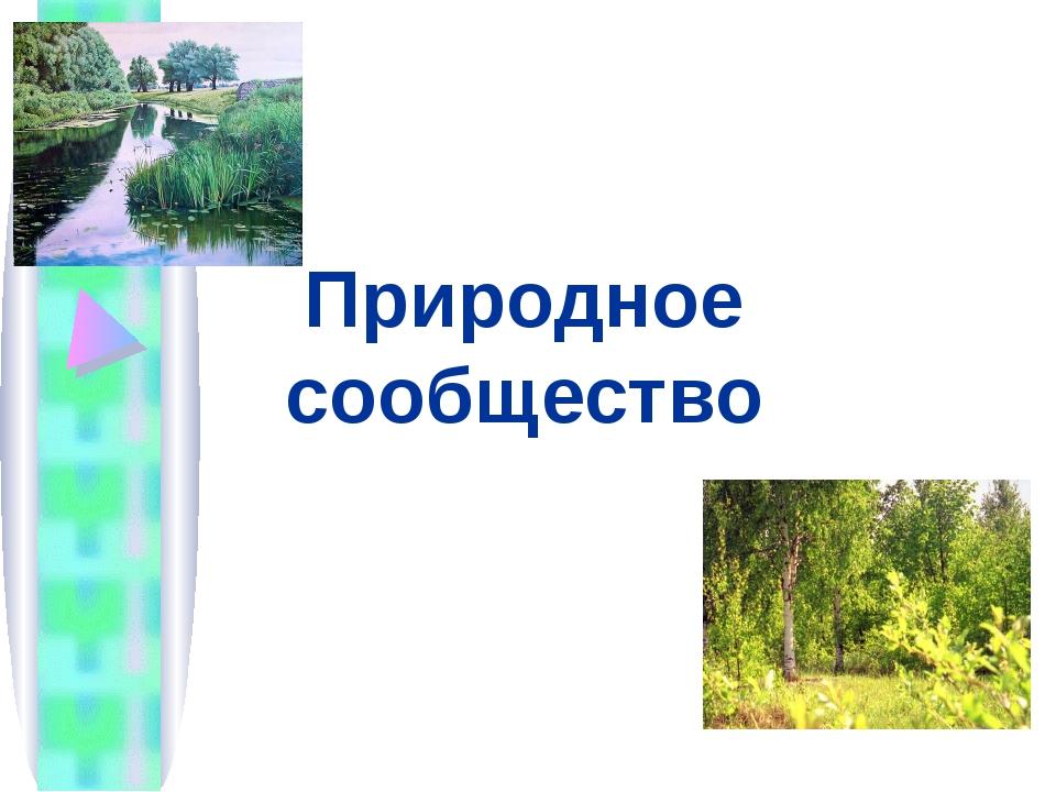 Природное сообщество