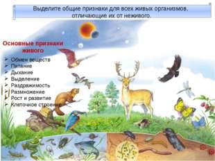 Выделите общие признаки для всех живых организмов, отличающие их от неживого