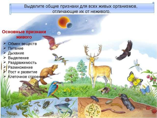 Выделите общие признаки для всех живых организмов, отличающие их от неживого...
