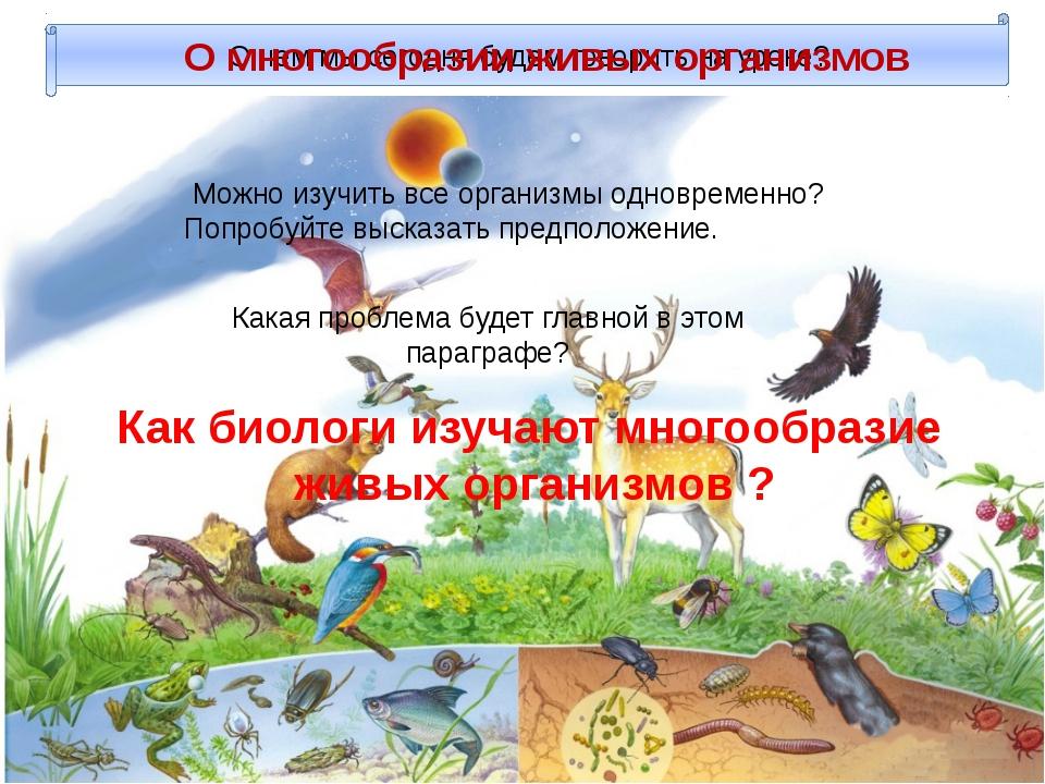 О чем мы сегодня будем говорить на уроке? Можно изучить все организмы одновре...