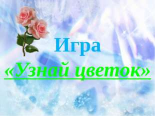 Игра «Узнай цветок»