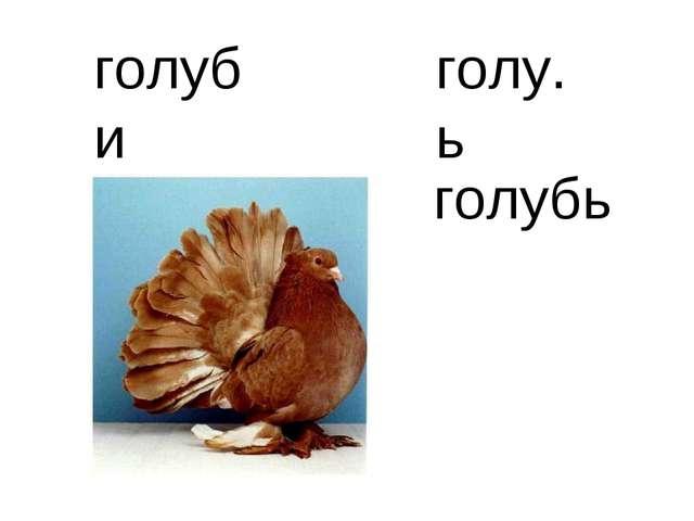 голу.ь голуби голубь