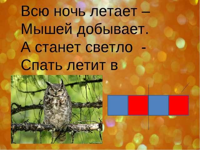Всю ночь летает – Мышей добывает. А станет светло - Спать летит в дупло.