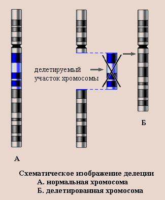 http://www.pedklin.ru/VPR/images/mut3.jpg