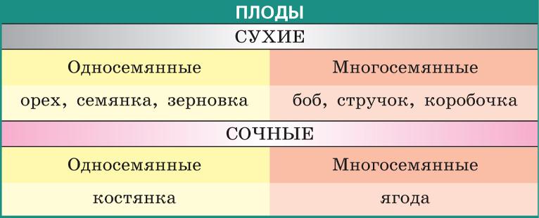 hello_html_26096ec4.png