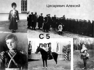 С 5 лет Цесаревич Алексей Пятилетнего цесаревича приучали к стреляющей пушке