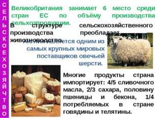 Англия является одним из самых крупных мировых поставщиков овечьей шерсти. Ве