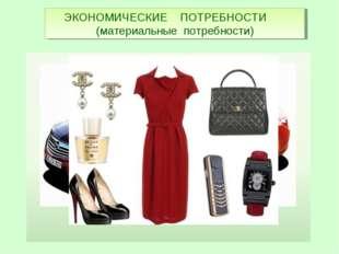 ЭКОНОМИЧЕСКИЕ ПОТРЕБНОСТИ (материальные потребности)