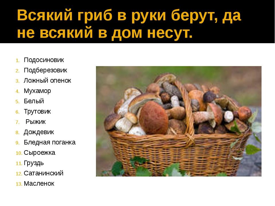 Всякий гриб в руки берут, да не всякий в дом несут. Подосиновик Подберезовик...