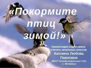«Покормите птиц зимой!» Презентацию подготовила: учитель начальных классов К