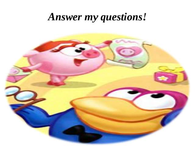 Answer my questions!