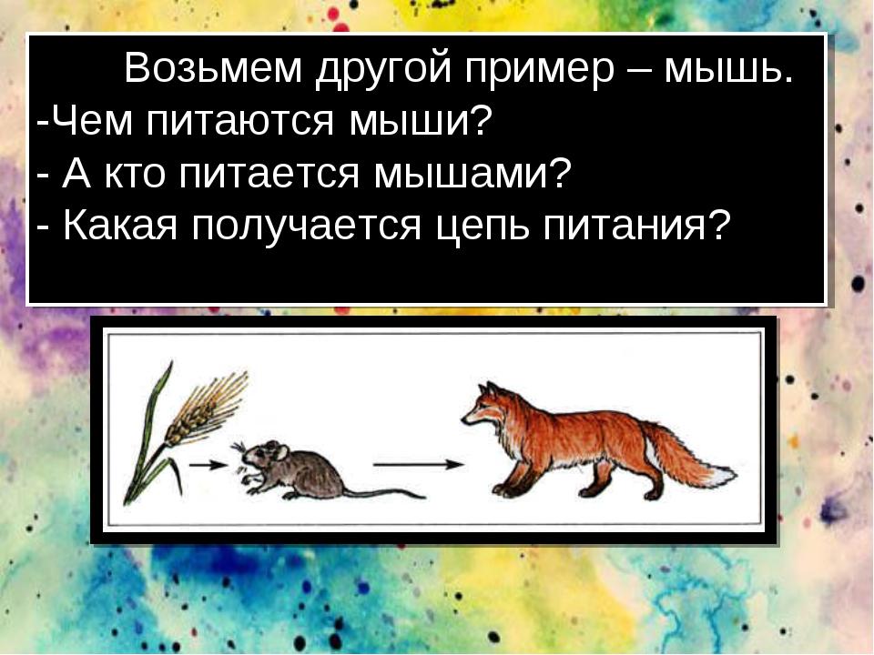 Возьмем другой пример – мышь. -Чем питаются мыши? - А кто питается мышами? -...