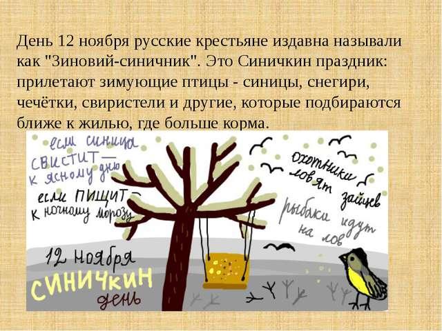 """День 12 ноября русские крестьяне издавна называли как """"Зиновий-синичник"""". Это..."""