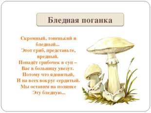 Скромный, тоненький и бледный... Этот гриб, представьте, вредный. Попадёт гри