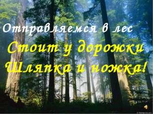 Отправляемся в лес Стоит у дорожки Шляпка и ножка!