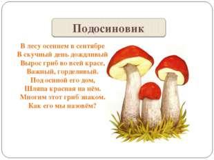 В лесу осеннем в сентябре В скучный день дождливый Вырос гриб во всей красе,