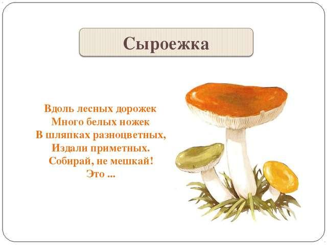 Вдоль лесных дорожек Много белых ножек В шляпках разноцветных, Издали приметн...