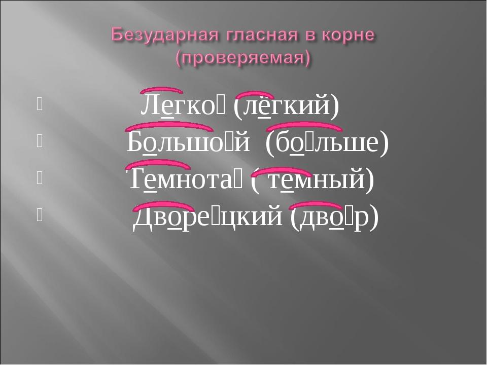 Легко́ (лёгкий) Большо́й (бо́льше) Темнота́ ( тёмный) Дворе́цкий (дво́р)