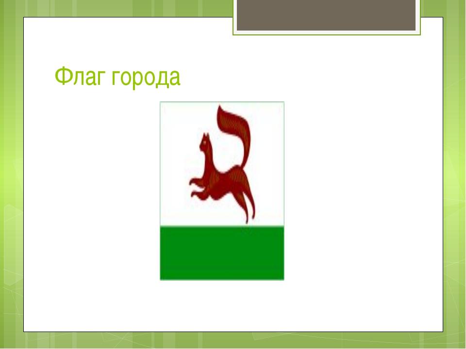 Флаг города
