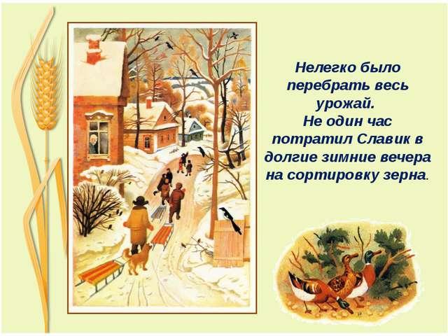 Нелегко было перебрать весь урожай. Не один час потратил Славик в долгие зим...