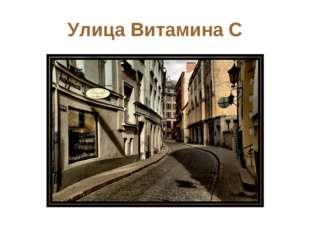 Улица Витамина С