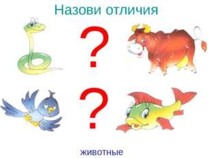 Назови отличия ? ? животные