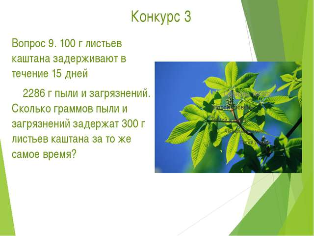 Конкурс 3 Вопрос 9. 100 г листьев каштана задерживают в течение 15 дней...