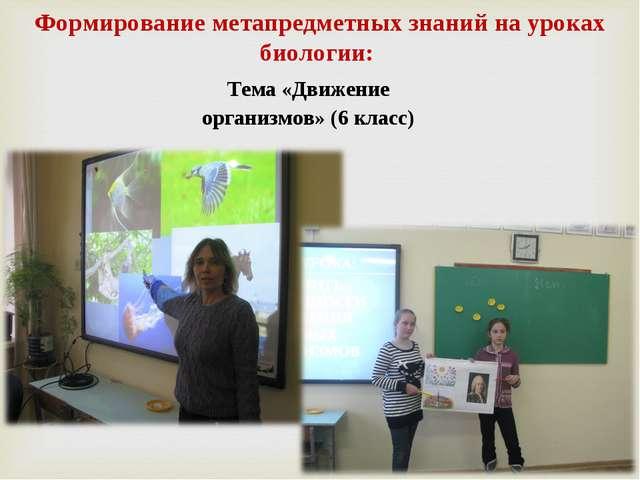 Тема «Движение организмов» (6 класс) Формирование метапредметных знаний на ур...