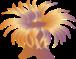 C:\Users\1\Desktop\ПЕДКОНКУРС\lg-sea-anemone.png