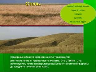 Обширные области Евразии заняты травянистой растительностью, прежде всего зла