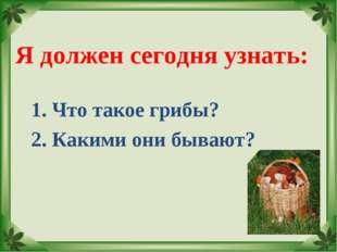 Я должен сегодня узнать: 1. Что такое грибы? 2. Какими они бывают?