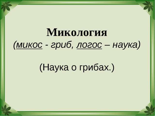 Микология (микос - гриб, логос – наука) (Наука о грибах.)