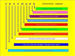 """Э В О Л Ю Ц И Я """"эволюция"""" терминін енгізген адам Топтағы біріншілікке жататы"""